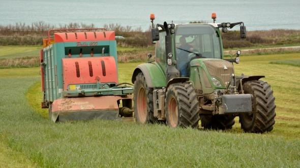 Choix des esp ces fourrag res pour l 39 affouragement en vert for Chambre agriculture manche