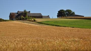A 5.750 �/ha, la hausse du prix des terres reprend de plus belle