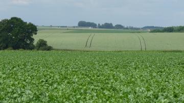 Pour un statut d�avenir au service de l�entreprise agricole (7/13)