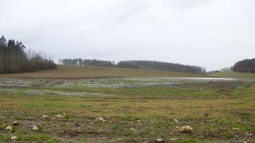Inondations dans un champ