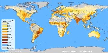 D�couvrez l'�tonnante r�partition des bovins � travers le monde
