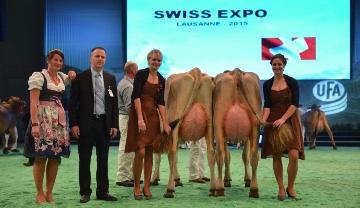 Palmarès du concours Brown Swiss