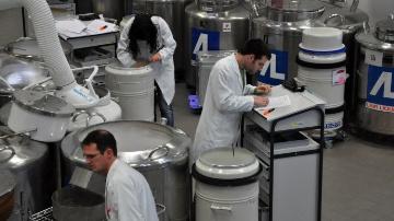 600 chercheurs lancent l'institut Sciences Animales Paris Saclay