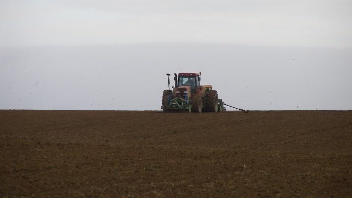 Baisse des surfaces de bl� en Argentine