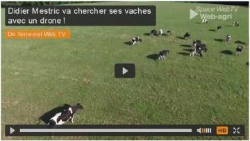 Didier Mestric va chercher ses vaches avec un drone !