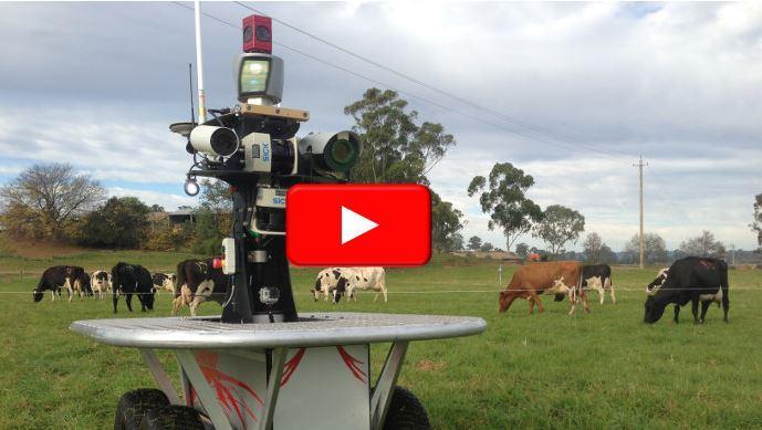 Dans les pr�s, les robots remplaceront-ils les bergers�?