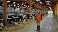 La production laiti�re, ils y croient ! - Un nouveau b�timent avec robots pour les Normandes de JB Maillier (partie 2)