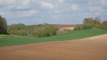 En Allemagne, convergence � 100 % et majoration des 46 premiers hectares