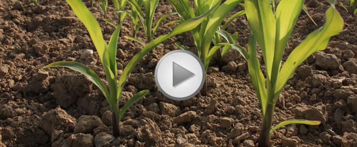 Essai Terre à Terre 2011 - Autoguidage SatPlan / Formentin Cyrille « Améliorer la marge sur mes cultures à valeur ajoutée »