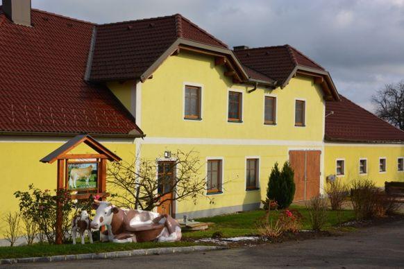 ELevage vaches laitière Autriche Stockinger