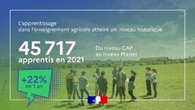 nombre d apprentis en 20202021 dansl enseignement agricole
