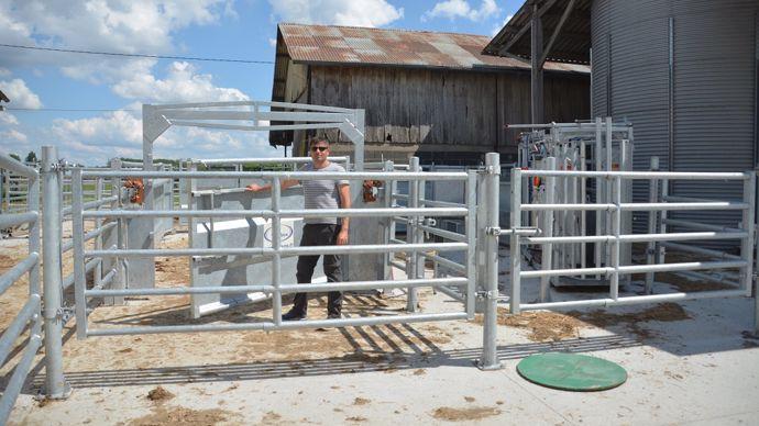 Parc de contention pour vaches allaitantes