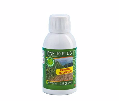 PNF 19 plus