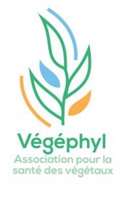 Logo Végéphyl