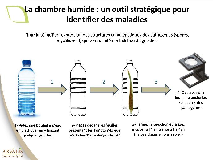 Figure 1 : Test de la bouteille