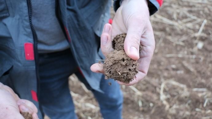 Qualité agronomique des sols