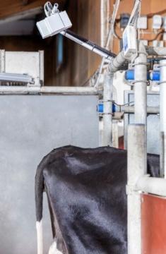 La caméra 3D Bcs de Delaval contrôle la note d'état corporel des vaches