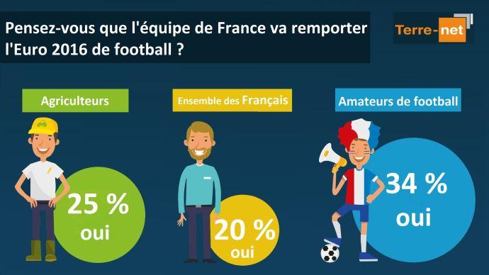 Sondage sur la victoire de l'équipe de France à l'Euro 2016 de football