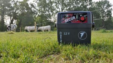 Les éleveurs plébiscitent la clôture électrique