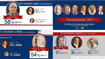 Juppé ou Le Maire contre Le Pen: le choix des agriculteurs