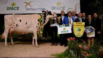 Une Chouette victoire au Space 2016 pour l'élevage Gwenn Holstein (56)