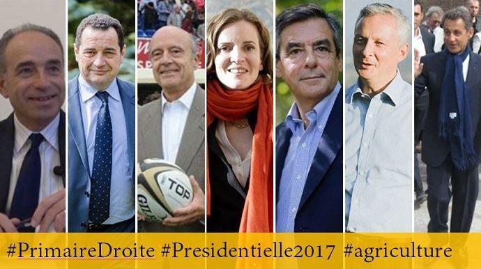 Les sept candidats à la primaire de la droite et du centre: Jean-François Copé, Jean-Frédéric Poisson, Alain Juppé, Nathalie Kosciusko-Morizet, François Fillon, Bruno Le Maire et Nicolas Sarkozy.