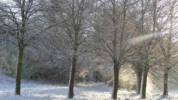 La neige sera-t-elle au rendez-vous à Noël?
