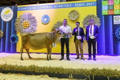 Palmar s concours race jersiaise au salon de l 39 agriculture 2017 - Palmares salon de l agriculture ...