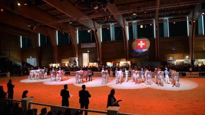 Ainsi, les championnes nationales 2016 Holstein Galys-Vray et Red Holstein Bopi Talent LOTANIE conservent leur titre une année de plus.