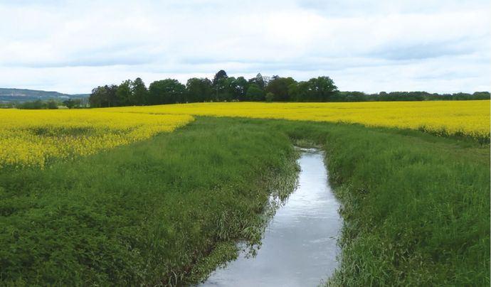 Les conditions peuvent varier d'un champ à l'autre
