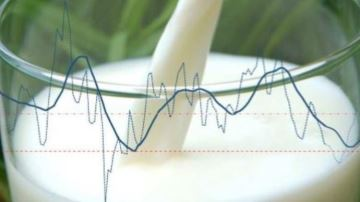 Milc: l'indicateur de marge laitière de l'Institut de l'élevage