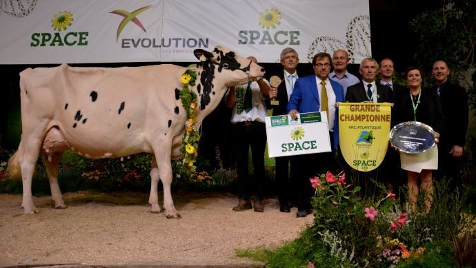 Championne Holstein Space2016