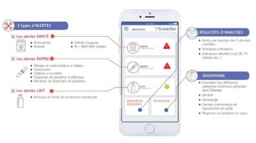 Eilyps lance Breeder son application smartphone de suivi de troupeau
