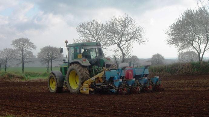 Semis de maïs en Bretagne.