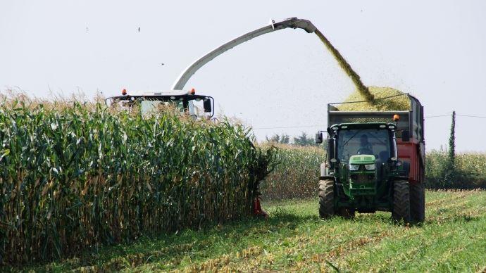 La dégradabilité de l'amidon (DTamidon) assure un potentiel laitier mais qui dit plus d'amidon dit maïs mûr et donc une digestibilité de la fibre amoindrie (dNDF). Il est donc important de trouver le juste milieu!