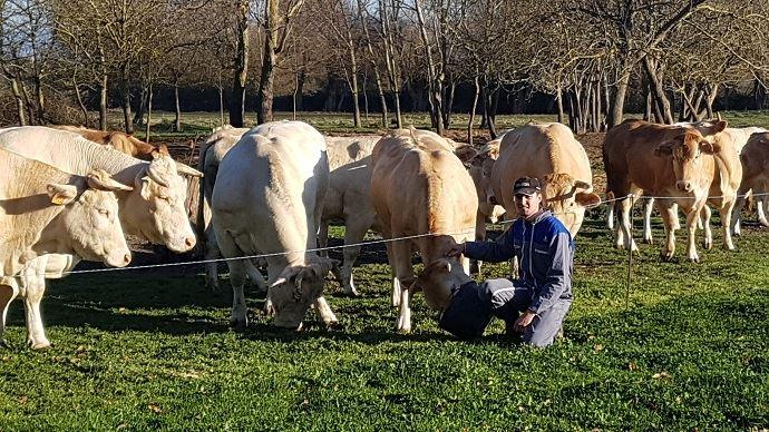 Ludovic Marty s'est installé à Revel, en Haute-Garonne, sur l'exploitation familiale: une petite structure de 48ha et 14 vaches allaitantes en production de veaux sous la mère,