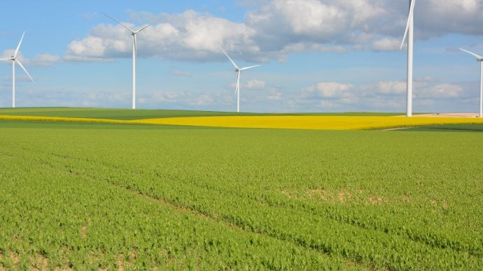 Paysage agricole au printemps.