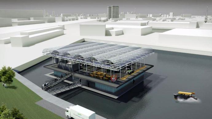 La première ferme flottante au monde sera construite dans le port de Rotterdam et accueillera une quarantaine de Montbéliardes