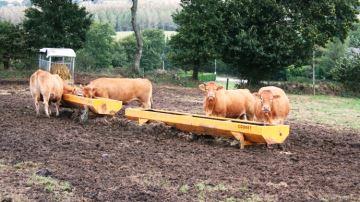 La majorité des éleveurs ne sont pas encore favorables au pâturage d'hiver