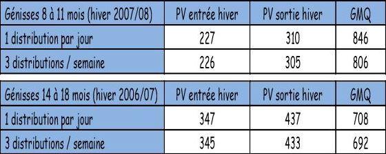 Les 3 distributions/semaine donnent des mêmes résultats de poids et GMQ chez les génisses qu'en affouragement quotidien