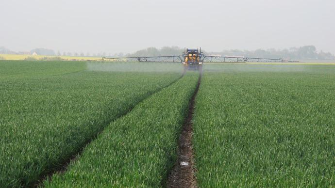 Protection fongicide du blé.