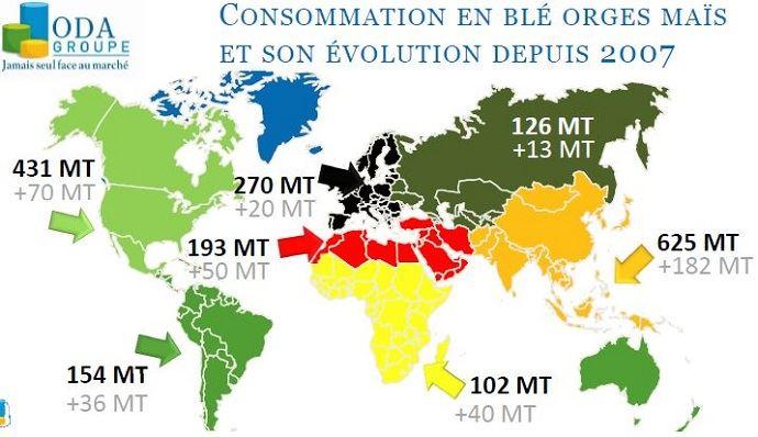 Consommation de céréales par continent