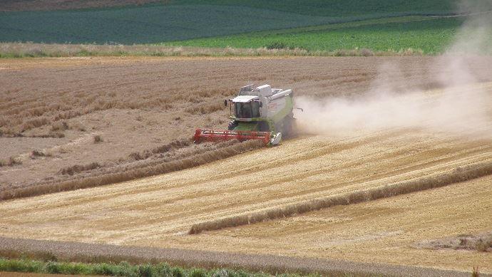 En Russie, 55% des terres cultivées le sont par environ 40000 grandes fermes de plus de 5000 hectares.