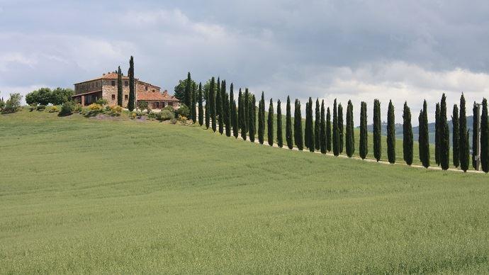 En Vénétie comme en Toscane, l'agriculture de précision reste peu utilisée en Italie.