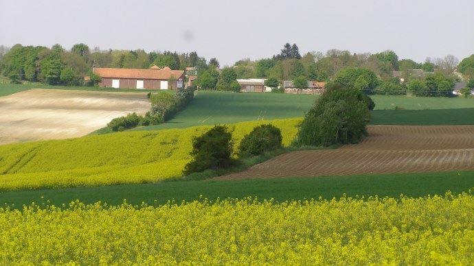 L'interdiction, à terme, du glyphosate et des néonicotinoïdes entrainera, selon l'AGPB, un surcoût de 1,450 Mds€ pour les producteurs français de grandes cultures.