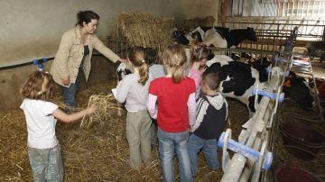 Les écoles bientôt ouvertes à la propagande vegan?