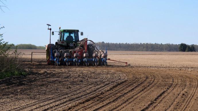 La semaine a par ailleurs été marquée par une avancée rapide des semis de maïs et de soja aux Etats-Unis.