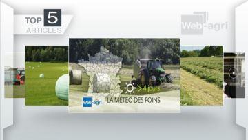 Foin, enrubannage et ensilage d'herbe à l'honneur sur Web-agri cette semaine