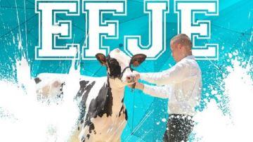 27 jeunes en compétition à l'école française des jeunes éleveurs