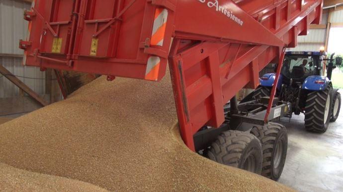 Benne de blé